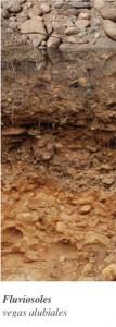 fluviosoles-20120426095705